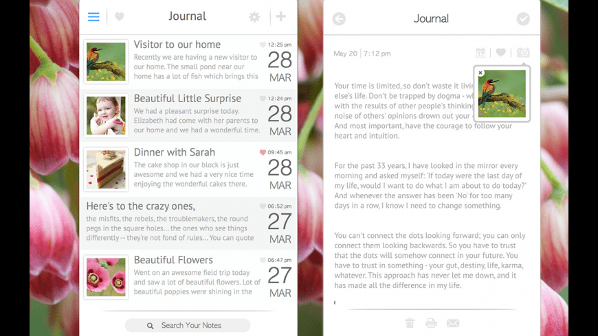 Journal for Mac - review, screenshots