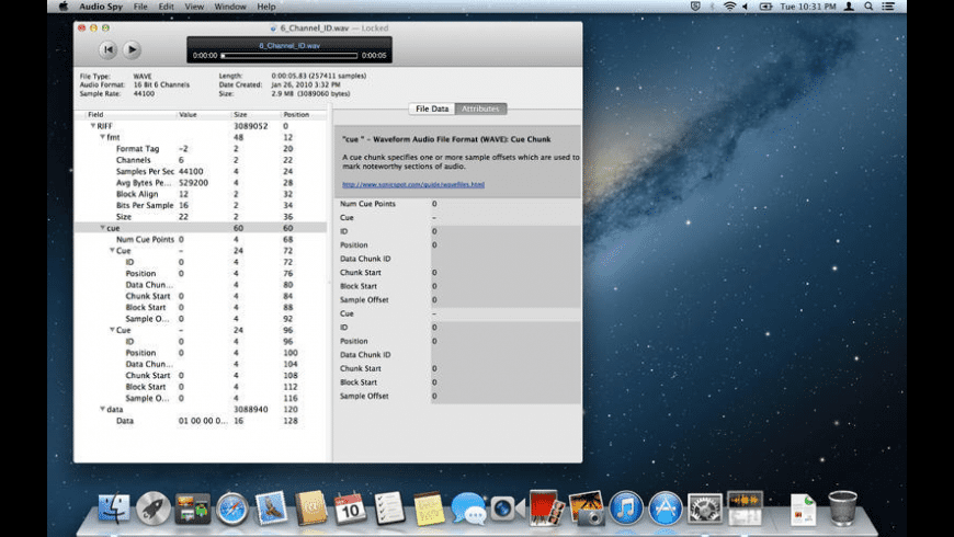 Audio Spy for Mac - review, screenshots