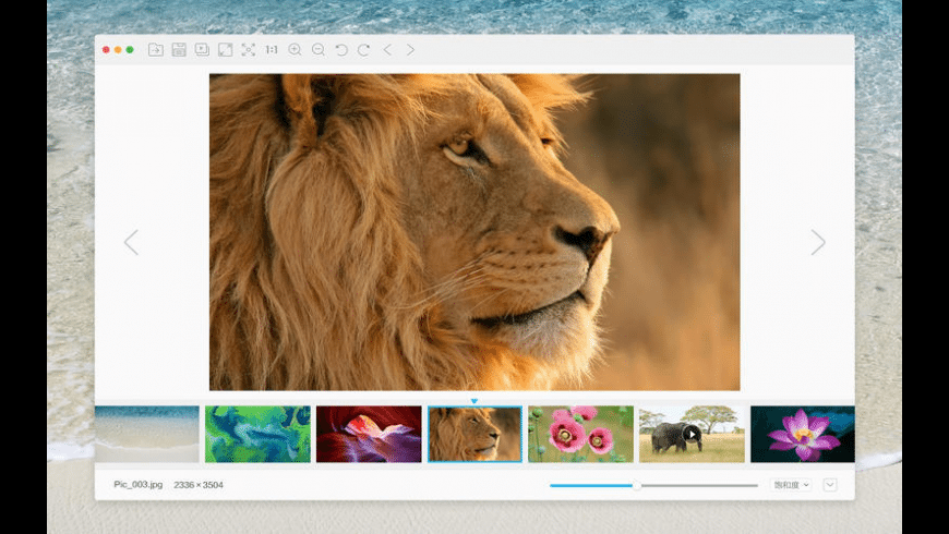 Photo Berry for Mac - review, screenshots