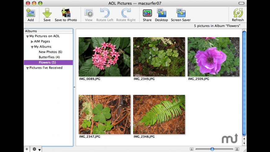 AOL Pictures for Mac - review, screenshots