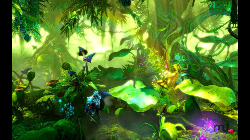 Trine 2 for Mac - review, screenshots