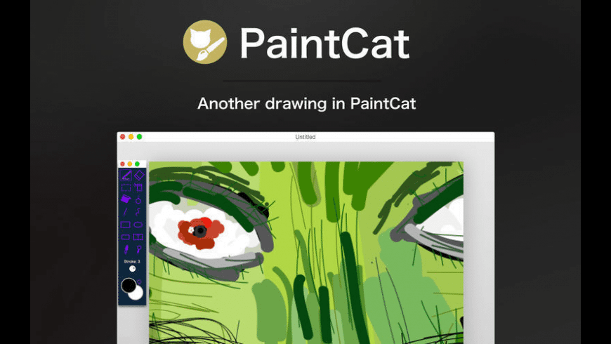 PaintCat for Mac - review, screenshots