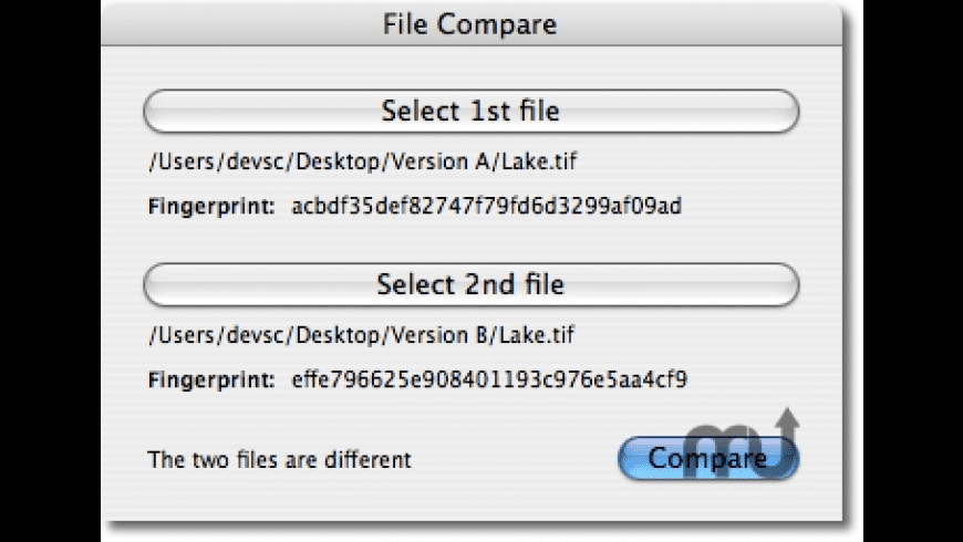 File Compare for Mac - review, screenshots