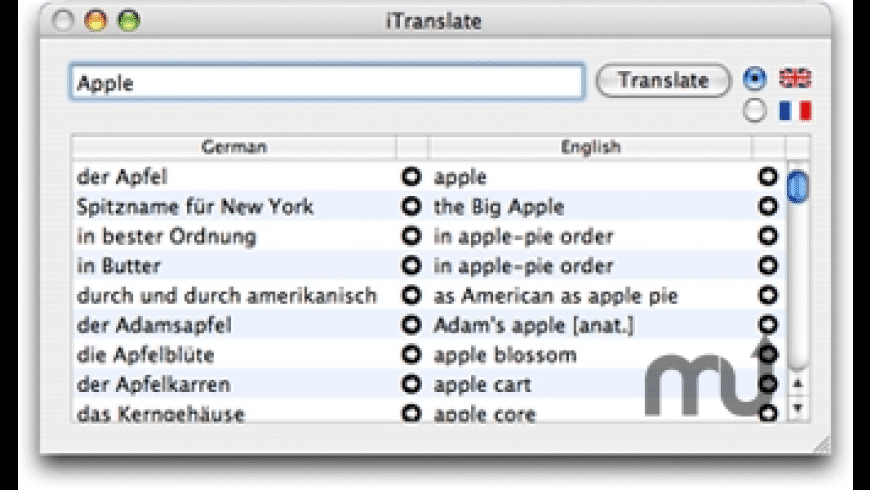 iTranslate for Mac - review, screenshots